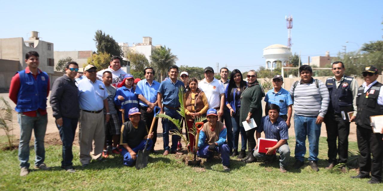 Víctor Larco será arborizado con 80 especies donadas por Colegio de Ingenieros