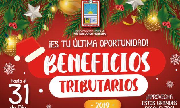 Conoce los beneficios tributarios de fin de año